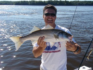 Maine Guide Striped Bass Fishing